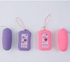 ไข่สั่น vibrator VB-005-4