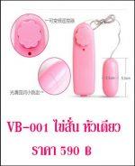 ไข่สั่น vibrator VB-001-1