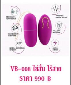 ไข่สั่น vibrator VB-008-1