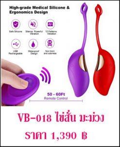 ไข่สั่น vibrator VB-018-1